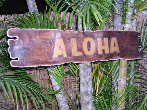 """Aloha"" Sign Drift Wood w/ Rope 40"" - Tropical Decor 