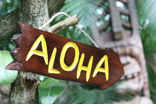 """ALOHA"" DRIFTWOOD SIGN 12"" - POOL DECOR"