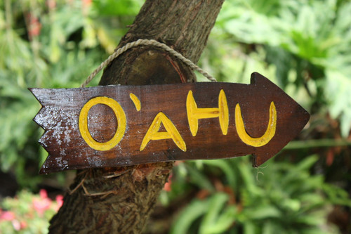 """OAHU"" DRIFTWOOD SIGN 12"" - POOL DECOR"