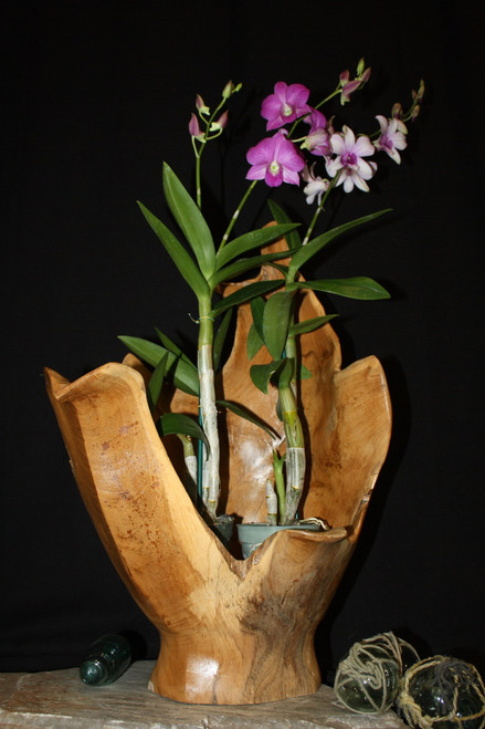 "Wooden Vase Rustic Bowl Sculpture 15"" X 12"" X 24"" | #hwa181"