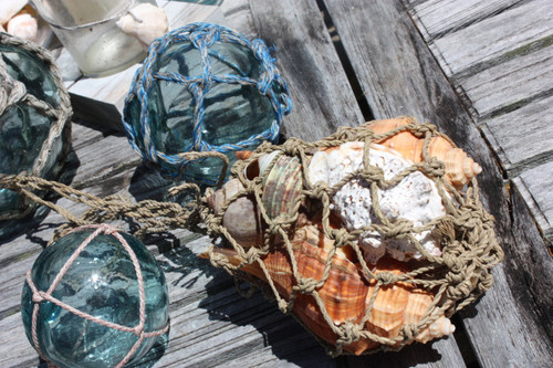 Seashell Assortment In Coastal Net Bag - Coastal Living