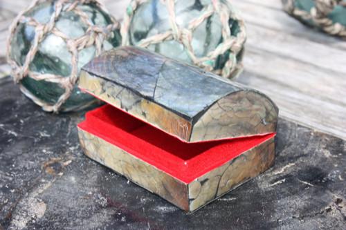 Seashell Keepsake Box Medium - Black - Coastal Decor