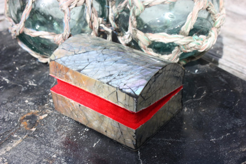 Seashell Keepsake Box Small - Black - Coastal Decor