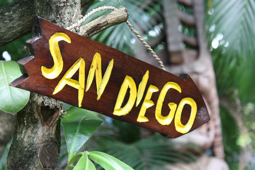 """SAN DIEGO"" DRIFTWOOD SIGN 12"" - POOL DECOR"