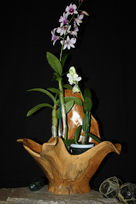 "Wooden Vase Rustic Bowl Sculpture 18"" X 15"" X 18"" 