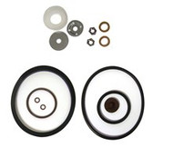 Chapin Seal & Gasket Kit