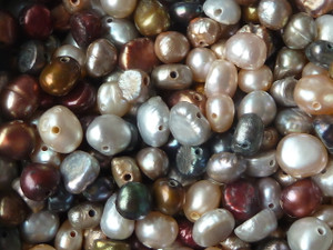 Little Freshwater Pearls 5-6mm Autumn Mix