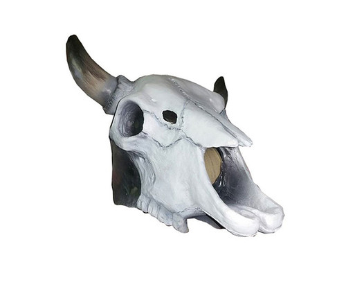 White Cow Skull Latex Adult Size Animal Mask  Costume & Accessories
