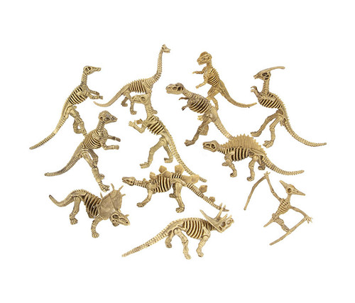 Assorted Dinosaur Fossils 12pc Set Bulk Novelties