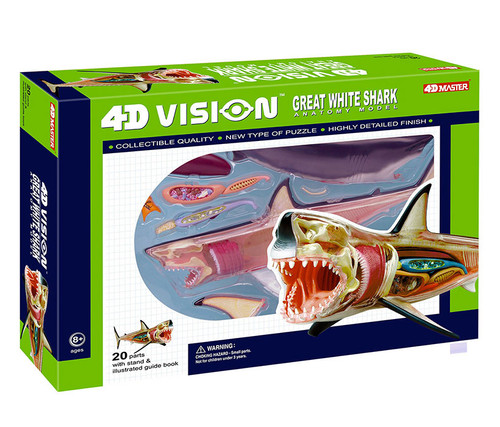 Great White Shark Anatomy Model Educational Play Set