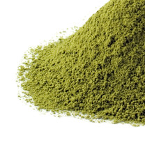 Izu Matcha Green Tea