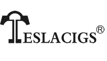 teslacigs logo