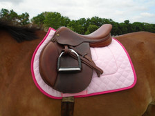 Pink with Raspberry Trim Horse Saddle Pad Front View