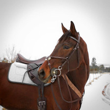 Matching Silver Saddle Pad