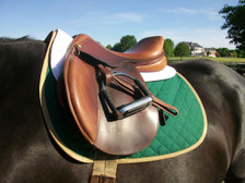 Hunter Green with Tan Trim Horse Baby Pad Front View