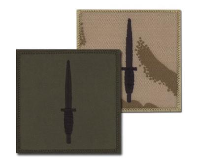Patch - 3 CDO Brigade Flash