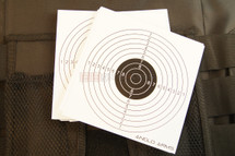 Anglo arms paper targets 50 pc x 14cm