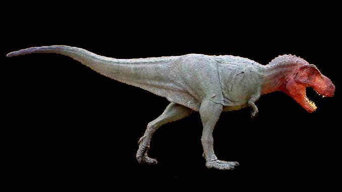 Image gallery tyrannosaur for Tyranosaurus