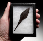 R147 - CHOICE ROMAN IRON ARROWHEAD FROM THE BYZANTINE ERA