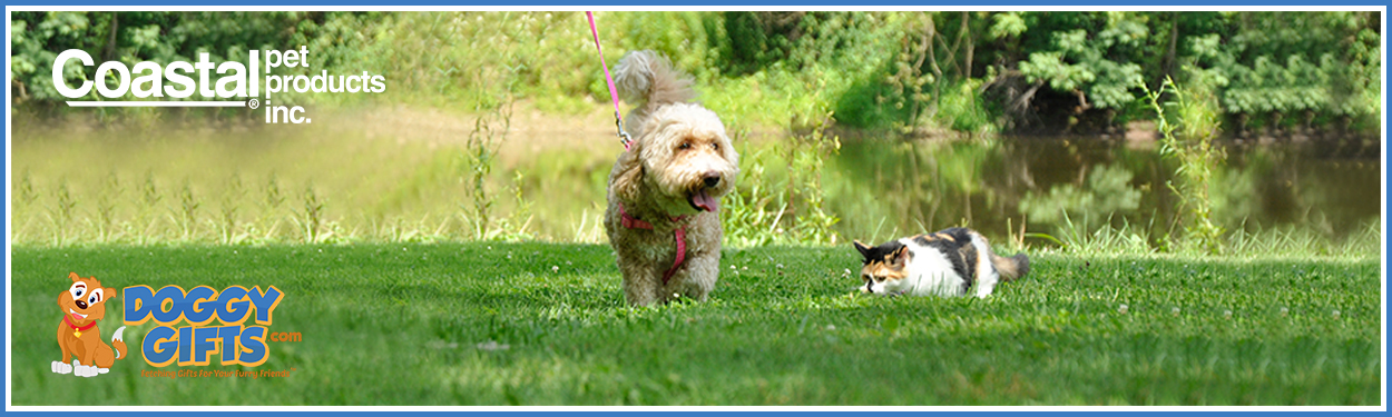 coastal-pet-dog-and-cats.jpg