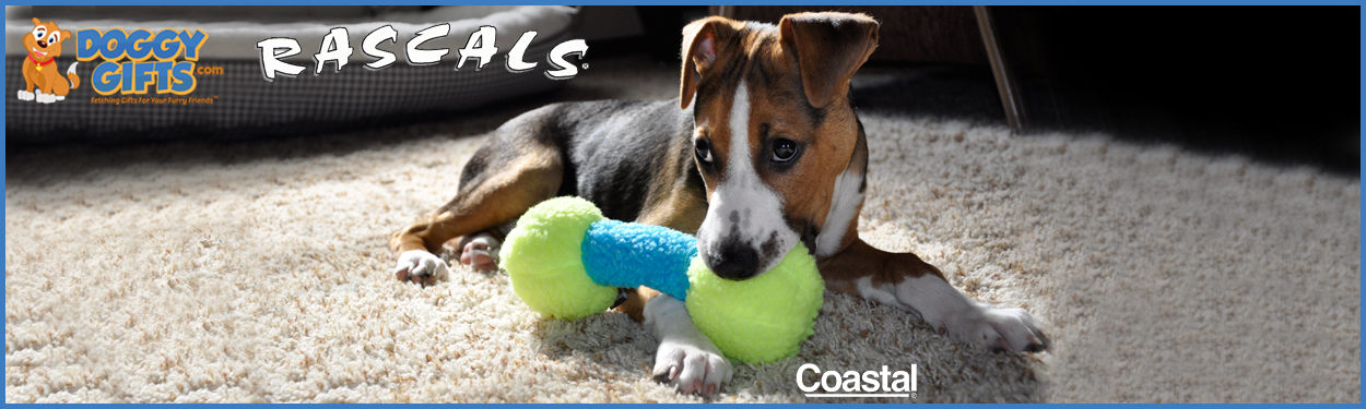 doggy-gifts-coastal-pet-rascals-lifestyle-home-page.jpg