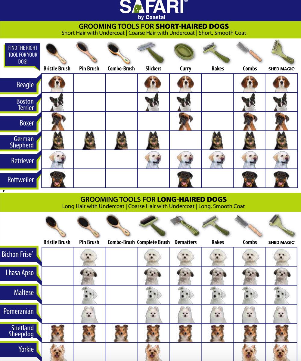 safari-grooming-information.png