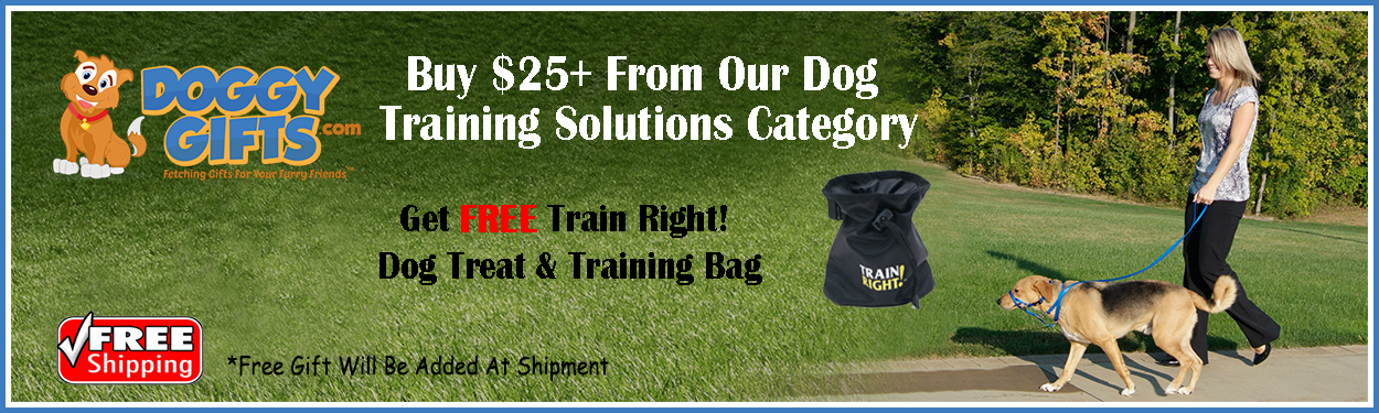 training-solutions-items-free-gift-over-25.jpg