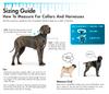 Coastal Pet Products Sizing Information