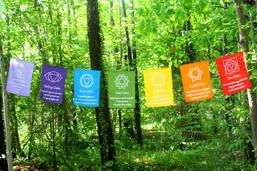 Seven Chakras Rainbow Flags