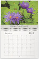 January - Midnight Purple Tropical Water Lily