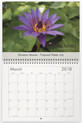 March - Director Moore Purple Tropical Water Lily