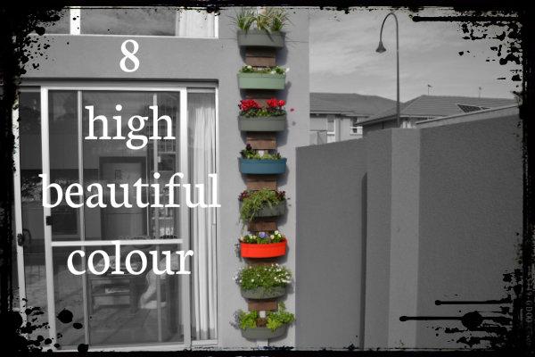 8-high.jpg