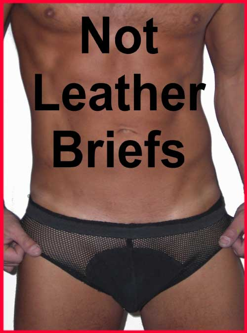 not-leather-brief.jpg