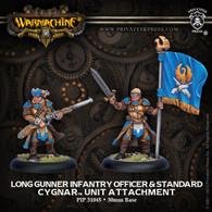 Long Gunner Infantry Officer & Standard