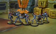 Neoterran Capitaline Army Sectorial