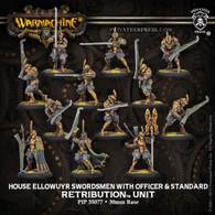 House Ellowuyr Swordsmen with Officer and Standard