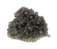Plaza Sterlet (Sterlet Sturgeon Caviar)