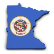 state-it-security-law-mn.jpg