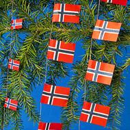 Flags on Strings - Norway (FS-N)