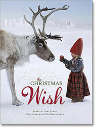 The Christmas Wish (81681-3)