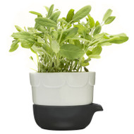 Sagaform Green Herb Pot - Sage Green (5016663)