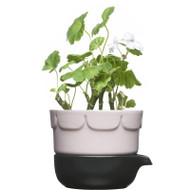 Sagaform Green Herb Pot - Pink (5016675)