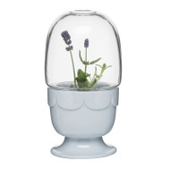 Greenhouse Planter with Glass Dome - Blue (5017187)