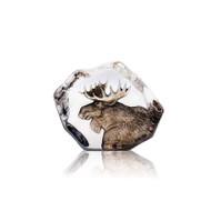 Wildlife Moose - Cast Crystal (33952)