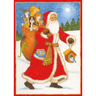 Santa With Bag Of Animals Christmas Card Box C Size 16 In (87210)