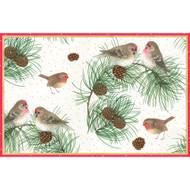 Caspari Boxed Christmas Cards - Woodland Birds (84309)