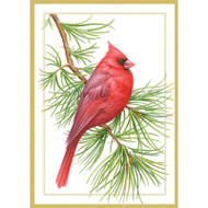 Caspari Boxed Christmas Cards - Cardinal On A Pine Branch - 16 In (86110)