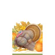 Thanksgiving Harvest Paper Guest Towel Napkins - 15 PK (14910G)