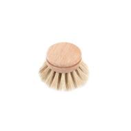 Dishbrush Refill (1101-01)