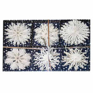 Straw Star Ornaments - White Glitter Set (H1-664)
